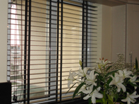 VENETIAN HORIZONTAL BLINDS